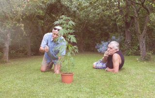 Cannabis Use and Older Adults Benefits